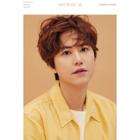 kyuhyun goodbye for now